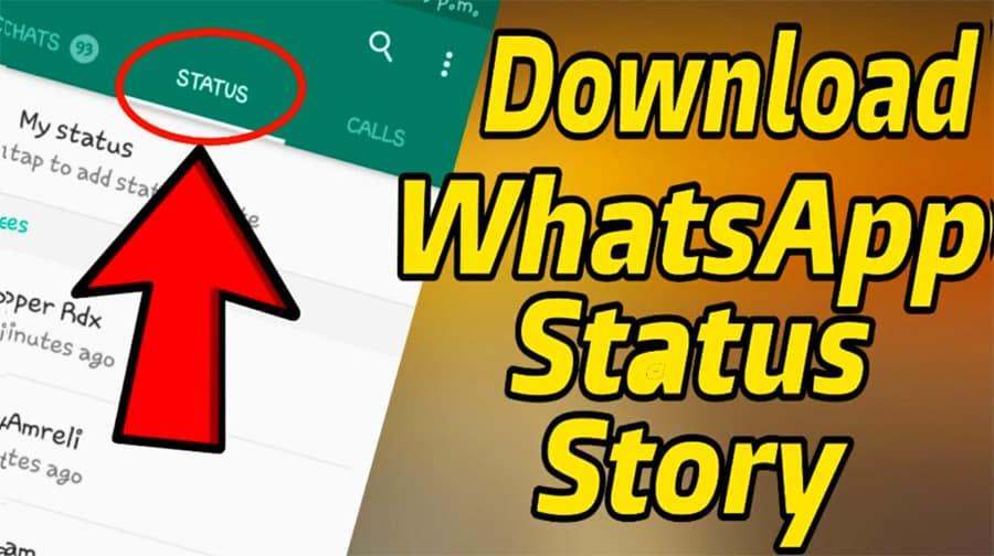 Download-WA-Story