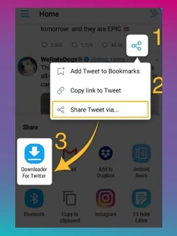 InShot Downloader for Twitter