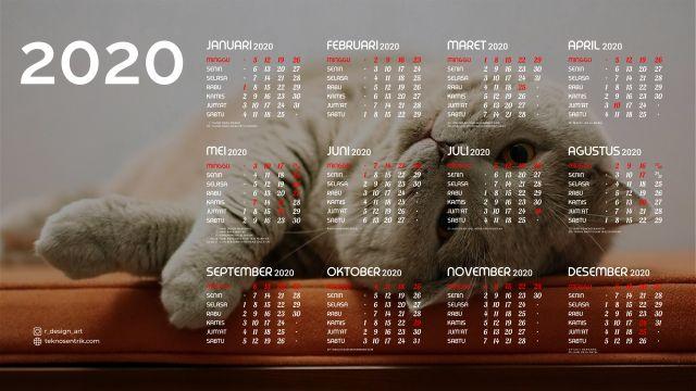 Kalender 2020 background kucing 2 Full HD 4K