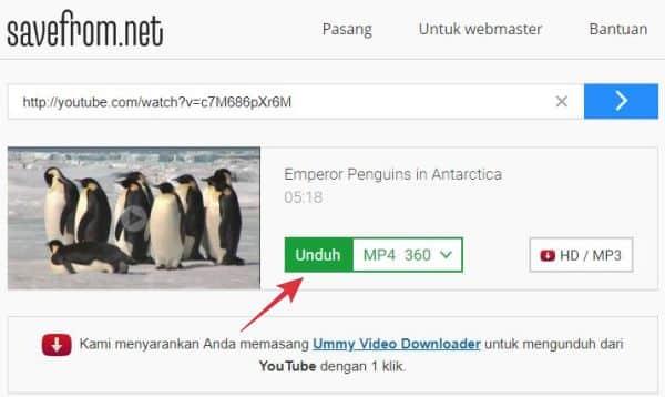 cara download youtube di pc tanpa aplikasi
