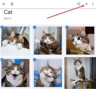 cara membuat GIF dari foto menggunakan Google Photos