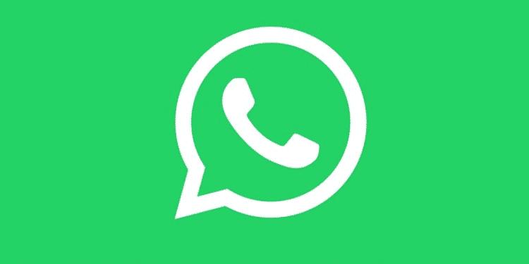 cara mengatasi whatsapp tidak bisa membuka pdf