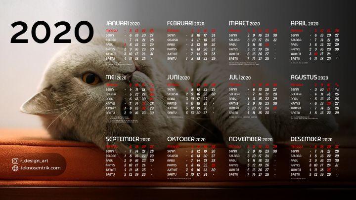 kalender 2020 background kucing