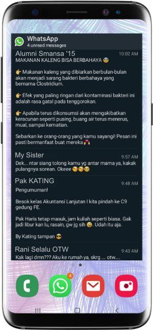 semua pesan dari grup whatsapp bisa dibaca tanpa diketahui pengirimnya