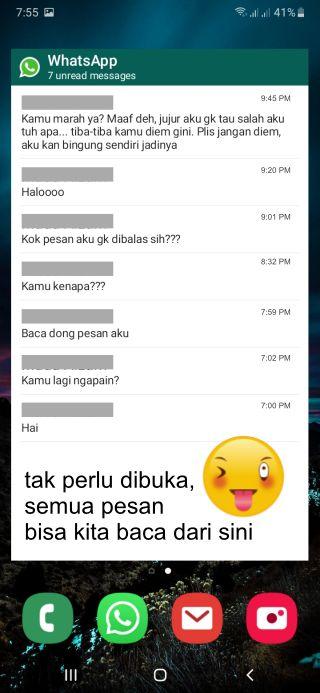 widget whatsapp untuk baca pesan tanpa online