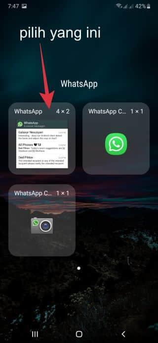 widget whatsapp untuk membaca pesan tanpa online