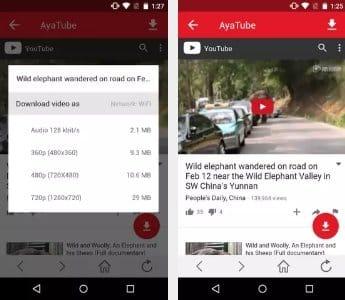 youtube video downloader apk